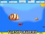 Игра Рождённый, чтобы стать большим - играть бесплатно онлайн