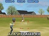 Игра Бейсбол на заднем дворе - играть бесплатно онлайн