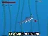 Игра Акулий укус - играть бесплатно онлайн