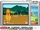 Игра Счастливые животные - играть бесплатно онлайн
