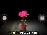Игра Митоз - играть бесплатно онлайн
