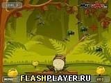 Игра Голодная лягушка - играть бесплатно онлайн