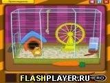 Игра Толстый хомячок - играть бесплатно онлайн