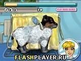 Игра Мой милый щеночек - играть бесплатно онлайн