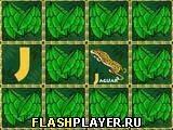 Игра Зоо-алфавит - играть бесплатно онлайн