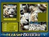 Игра Жми и скользи! - играть бесплатно онлайн