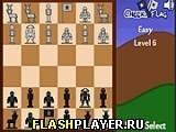Игра Проверь флаг - играть бесплатно онлайн