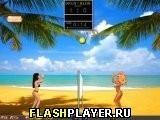 Игра Блондинки против брюнеток – пляжный волейбол - играть бесплатно онлайн