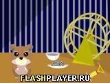 Игра Анипа - играть бесплатно онлайн