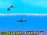 Игра Дельфин - играть бесплатно онлайн