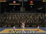 Игра Кроличья Олимпиада - Волейбол - играть бесплатно онлайн