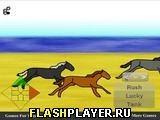 Игра Увлекательные скачки - играть бесплатно онлайн