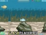 Игра Маленькая акула - играть бесплатно онлайн