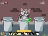 Игра Найди енота - играть бесплатно онлайн