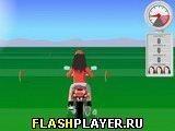 Игра Начинающий гонщик - играть бесплатно онлайн