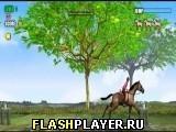 Игра Прыжки на лошадях - играть бесплатно онлайн