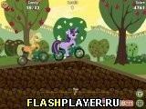 Игра Маленький пони – Гонки на велосипедах - играть бесплатно онлайн