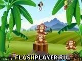 Игра Обезьяний баланс - играть бесплатно онлайн