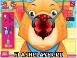 Игра Лечим собачий нос - играть бесплатно онлайн
