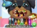 Игра Щенок у стоматолога - играть бесплатно онлайн