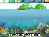 Игра Рыбачий остров - играть бесплатно онлайн