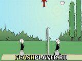 Игра Волейбол Дживса - играть бесплатно онлайн