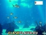Игра Хардкор рыбка - играть бесплатно онлайн