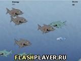 Игра Корм для рыб - играть бесплатно онлайн