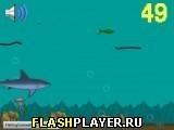Игра Жизнь рыбы - играть бесплатно онлайн