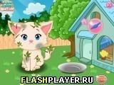 Игра Забота о прекрасном котёнке - играть бесплатно онлайн