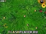 Игра 2 Больших Жучка - играть бесплатно онлайн