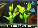 Игра Роботизированная рыба - играть бесплатно онлайн