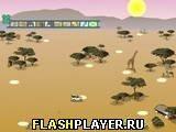 Игра Фото Сафари - играть бесплатно онлайн