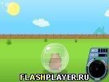 Игра Хомячок Гарри 3: Катящийся грызун - играть бесплатно онлайн