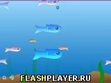 Игра Рыбка - играть бесплатно онлайн