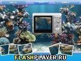 Игра Стрельба по дельфинам - играть бесплатно онлайн