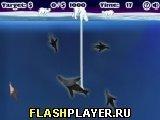 Игра Белый медведь ловит рыбу - играть бесплатно онлайн