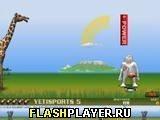 Игра Yetisports 5 – Катание на фламинго - играть бесплатно онлайн