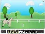 Игра Наездник - играть бесплатно онлайн