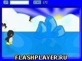 Игра Пингвиний скейтинг - играть бесплатно онлайн