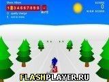 Игра Соник 3Д Сноубординг - играть бесплатно онлайн