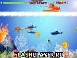Игра Белка на рыбалке, играть бесплатно онлайн (аркады)
