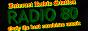 Радио 80
