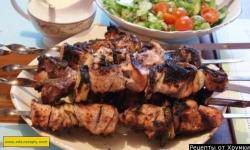 Шашлык на кефире из свинины рецепт приготовления