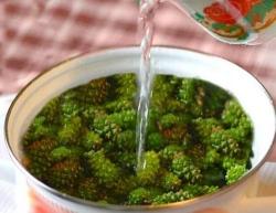 Как приготовить Варенье из сосны рецепт с фото