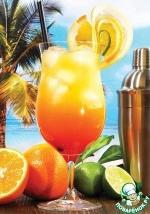 Коктейль из апельсинового сока с Мартини